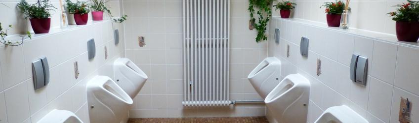 Comment Deboucher Des Toilettes Distriartisan