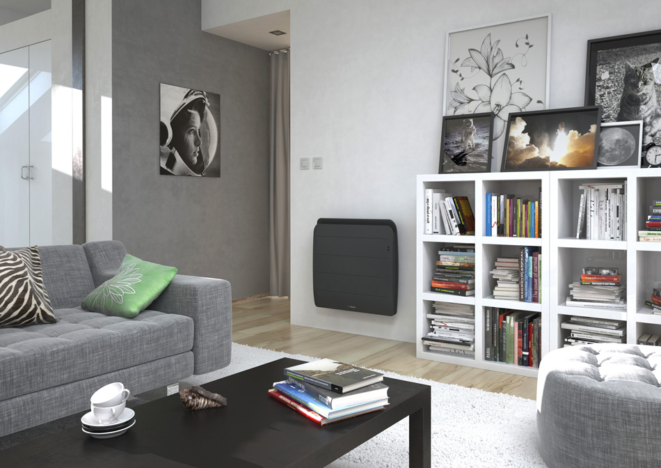 thermor radiateur fonte intelligent equateur 3 horizontal distriartisan. Black Bedroom Furniture Sets. Home Design Ideas
