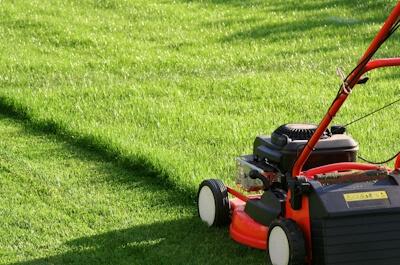 Comment tondre sa pelouse ?