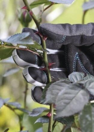 Gants de protection jardin