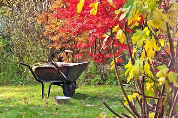 Nettoyer son jardin à l'automne